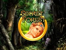 Игровые автоматы Secret Forest бесплатно